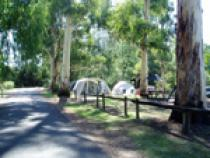 Looking for a new home – VicParks