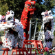 New Chinese Dragon To Be Awakened In Bendigo